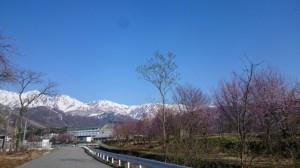 やっと春!
